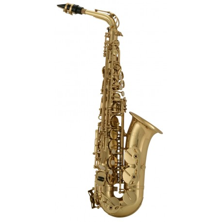 c.g. conn selmer AS650 Saxofón alto
