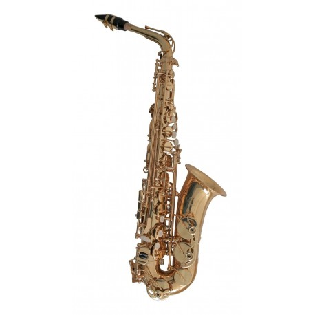 c.g. conn selmer AS501 saxofón alto